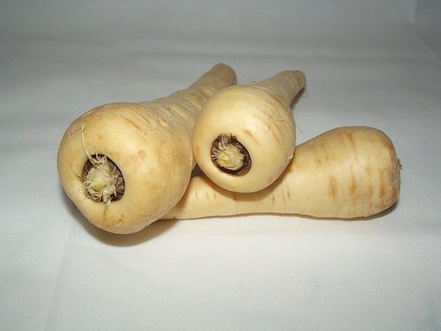 Fresh Parsnips