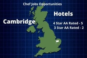 Cambridge Chef Jobs Infographic