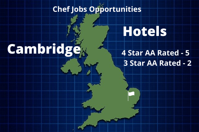 hotel chef jobs cambridge infographic of hotels