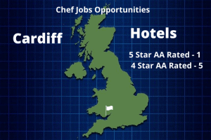 Cardiff Hotels Infographic